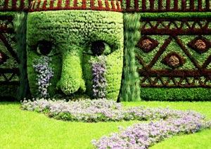 Креативный газончик