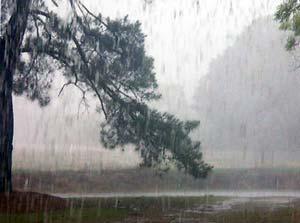 Дождь - грустно
