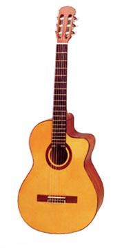 Примерно на такой гитаре пою я песни для души...